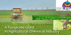 Insecticides (India) Limited, Domestic Crop Protection Companies, Next-Generation Crop Protection Products, Global Insecticide Market, Insecticides (India) Ltd, Insecticides, Herbicides, Fungicides, Biological, Plant Growth Regulators, Agro Chemical Companies, Insecticides India, Insecticides India share price, Stock Analysis, Stock Pick, Stocks, Trend analysis, Indian Agrochemical, Market Research, Fertilizers, Fertilizers Industry